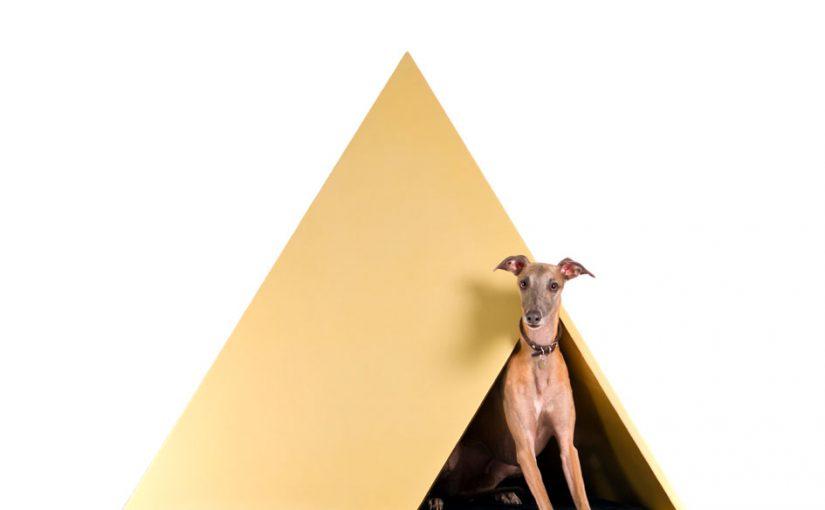 Inaugura Dogchitecture